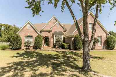 Bartlett Single Family Home For Sale: 8880 Carriage Creek