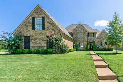 Collierville Single Family Home For Sale: 740 Lonewood
