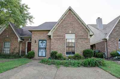 Memphis Single Family Home For Sale: 1637 Old Mill Stream