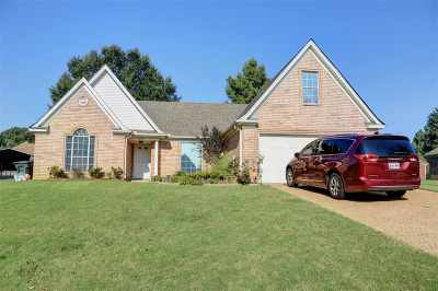 Bartlett Single Family Home For Sale: 3939 Carrie Brook