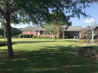 Selmer Single Family Home For Sale: 1256 Connie Smith