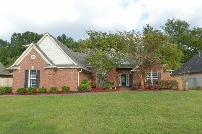 Lakeland Single Family Home For Sale: 4132 Swan Hill