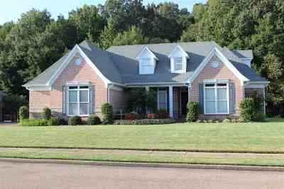 Cordova Single Family Home For Sale: 8902 River Meadow