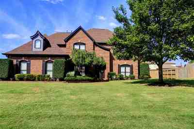 Collierville Single Family Home For Sale: 462 Indian Hollow
