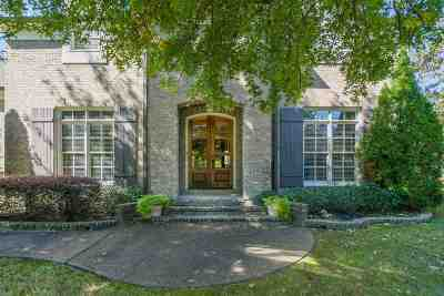 Collierville Single Family Home For Sale: 10017 Forest Oaks