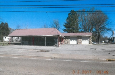 Savannah TN Commercial For Sale: $221,500
