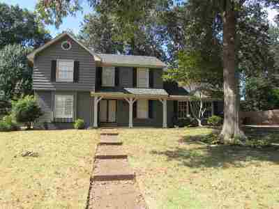 Collierville Single Family Home For Sale: 126 York Haven