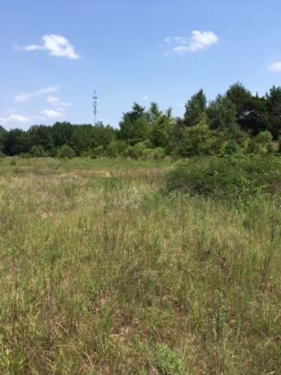 Olive Branch Residential Lots & Land For Sale: 7268 S Hwy 178