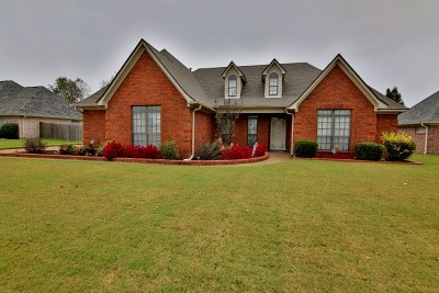 Bartlett Single Family Home For Sale: 6540 Raner Creek