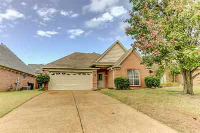 Bartlett Single Family Home For Sale: 6410 Persimmon View