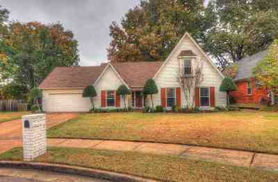 Bartlett Single Family Home For Sale: 3691 Brook Trail