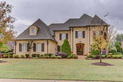 Collierville Single Family Home For Sale: 1319 Bridgepointe