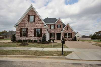 Collierville Single Family Home For Sale: 440 Ethan