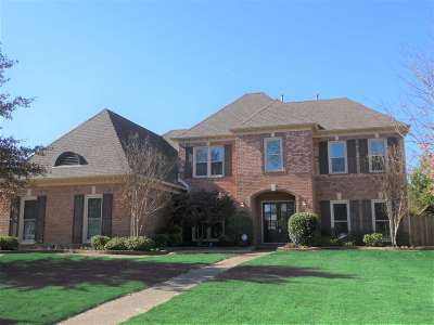 Collierville Single Family Home For Sale: 1695 Ghost Creek