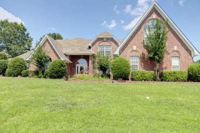Bartlett Single Family Home For Sale: 5224 Hare Creek