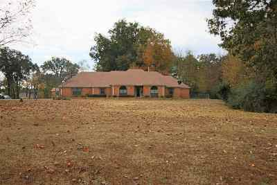 Southaven MS Single Family Home For Sale: $245,000