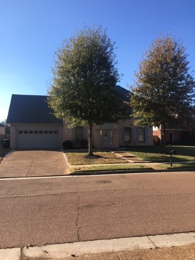 Collierville Rental For Rent: 4787 White Pass