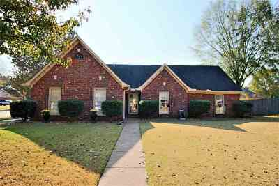 Collierville Single Family Home For Sale: 573 Autumn Meadows