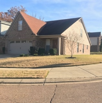 Arlington Single Family Home For Sale: 12369 Strong Heart