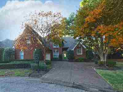 Memphis Single Family Home For Sale: 3201 Winderly Pine