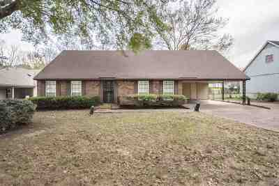 Bartlett Single Family Home For Sale: 7935 Memphis-Arlington