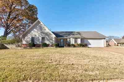 Lakeland Single Family Home For Sale: 9320 Glen Birnie