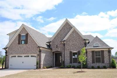 Olive Branch Single Family Home For Sale: 4342 Dockery Drive