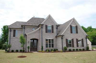 Olive Branch Single Family Home For Sale: 4663 Davis Grove