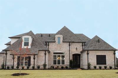 Collierville Single Family Home For Sale: 1253 Fruited Plain