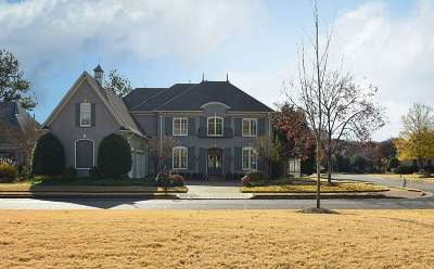 Collierville Single Family Home For Sale: 10301 Statfield