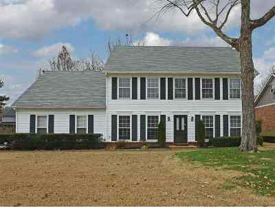 Collierville Single Family Home For Sale: 425 Royal Elm