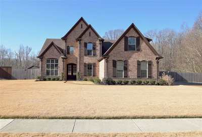 Unincorporated TN Single Family Home For Sale: $309,000
