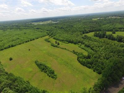 Moscow Residential Lots & Land For Sale: 1 Liberty