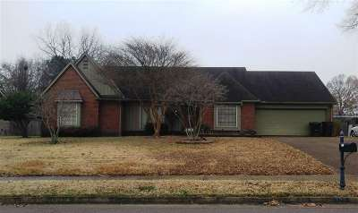 Collierville Single Family Home For Sale: 127 W Valleywood