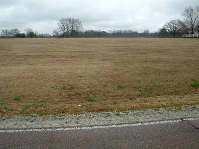 Brighton Residential Lots & Land For Sale: 00 Dawson