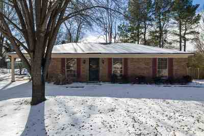 Collierville Single Family Home For Sale: 389 Bouldincrest