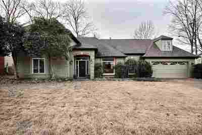 Collierville Single Family Home For Sale: 699 Royal Forest