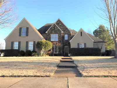 Collierville Single Family Home For Sale: 10711 Quiet