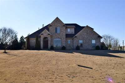Atoka Single Family Home For Sale: 65 Clementine