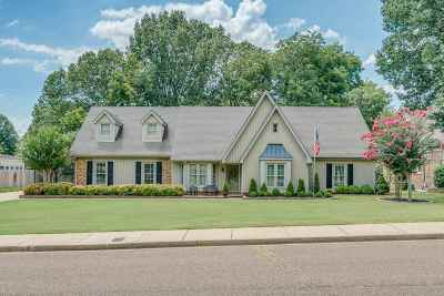 Collierville Single Family Home For Sale: 591 Royal Pecan
