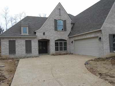 Memphis Single Family Home For Sale: 691 Rocky Field