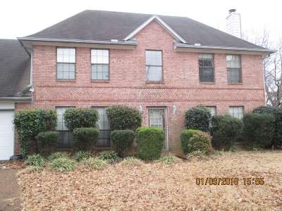 Bartlett Single Family Home For Sale: 3662 Oak Walk