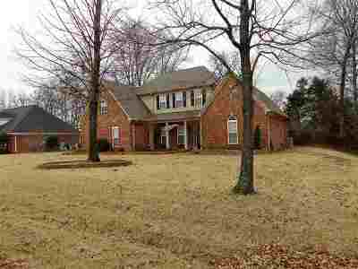Olive Branch Single Family Home For Sale: 8591 Saddle Creek