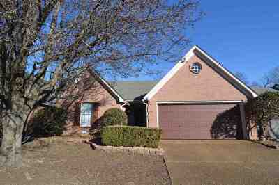 Lakeland Single Family Home For Sale: 9598 Daly