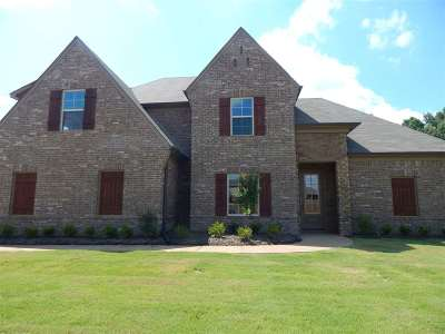 Bartlett Single Family Home For Sale: 6084 Abigail Bluffs