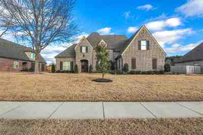 Collierville Single Family Home For Sale: 4464 Chestnut Hill