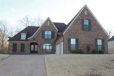 Bartlett Single Family Home For Sale: 6469 Wells Grove