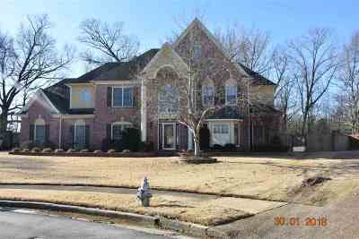 Collierville Single Family Home For Sale: 525 Chickasaw Land