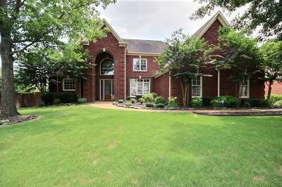 Collierville Single Family Home For Sale: 919 Stone Hedge