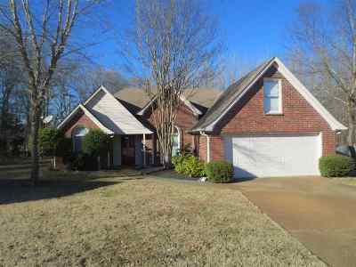 Collierville Single Family Home For Sale: 1519 Franklin Dale